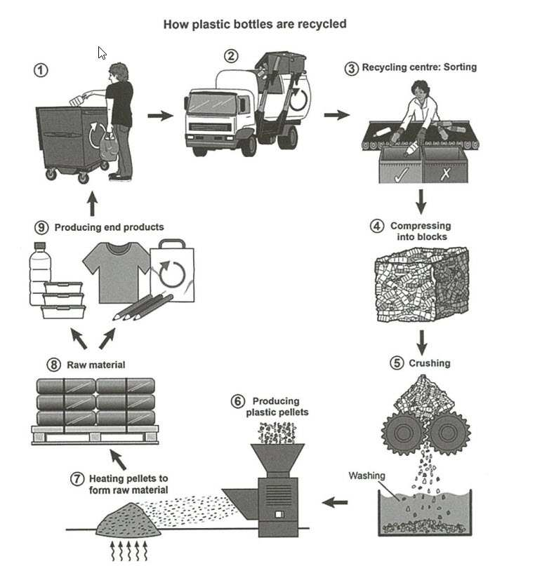 The Process for Recycling Plastic Bottles