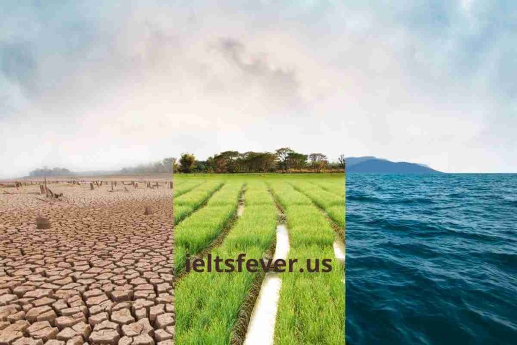 Some Believe that People Should Make Efforts to Fight Climate Change (4) (1)